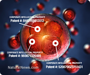 Human-Cells-Genes-DNA-Patents