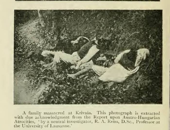 Криваја масакр Рајсов извештај