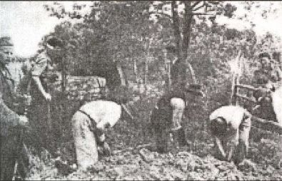 Serbian peasants digging their own graves before execution Croatia Kordun 1941.